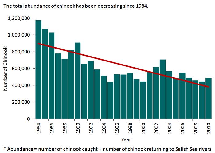 Chinook Salmon Endangered
