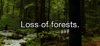 Loss of forests.