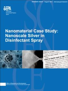 Cover of the Nanoscale Silver Final report