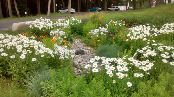 Soak Up the Rain: Rain Gardens | Soak Up the Rain | US EPA Rain Garden Design Zone on garden designs zone 6, garden designs zone 7, garden designs zone 3,