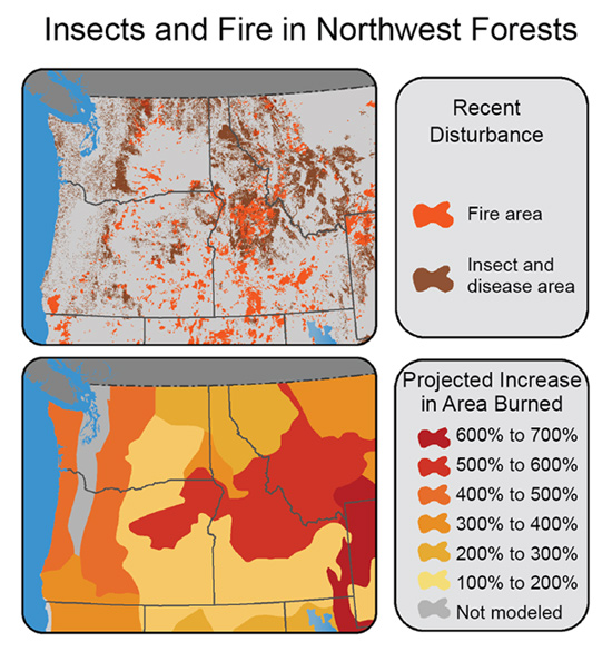 How Is the Climate Crisis Affecting the Pacific Northwest? | Climate ...