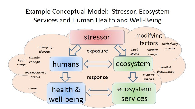 Integrating Human Health and Well-Being with Ecosystem ...