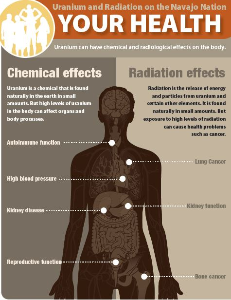 "Cover of 'Your Health: Uranium and Radiation on the Navajo Nation"" PDF showing chemical and radiation effects on the body. For the text version of this image and the complete document, click on the link below."