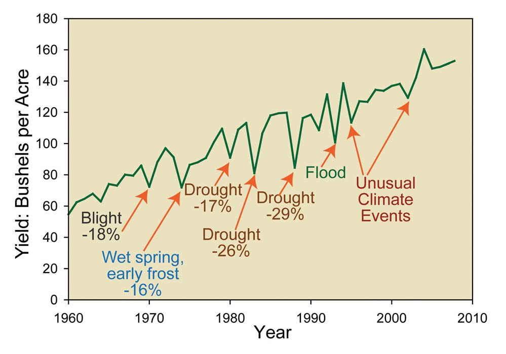the negative effects of global warming on food supply and security Climate change affects all dimensions of food security and nutrition:  the  production of some staple crops, and future climate change threatens to  exacerbate.