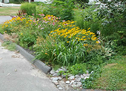 Residential rain garden in Leominster, Massachusetts