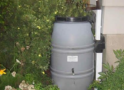 Rain Barrel (Photo Credit - CT DEEP)