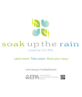 Soak Up the Rain Banner