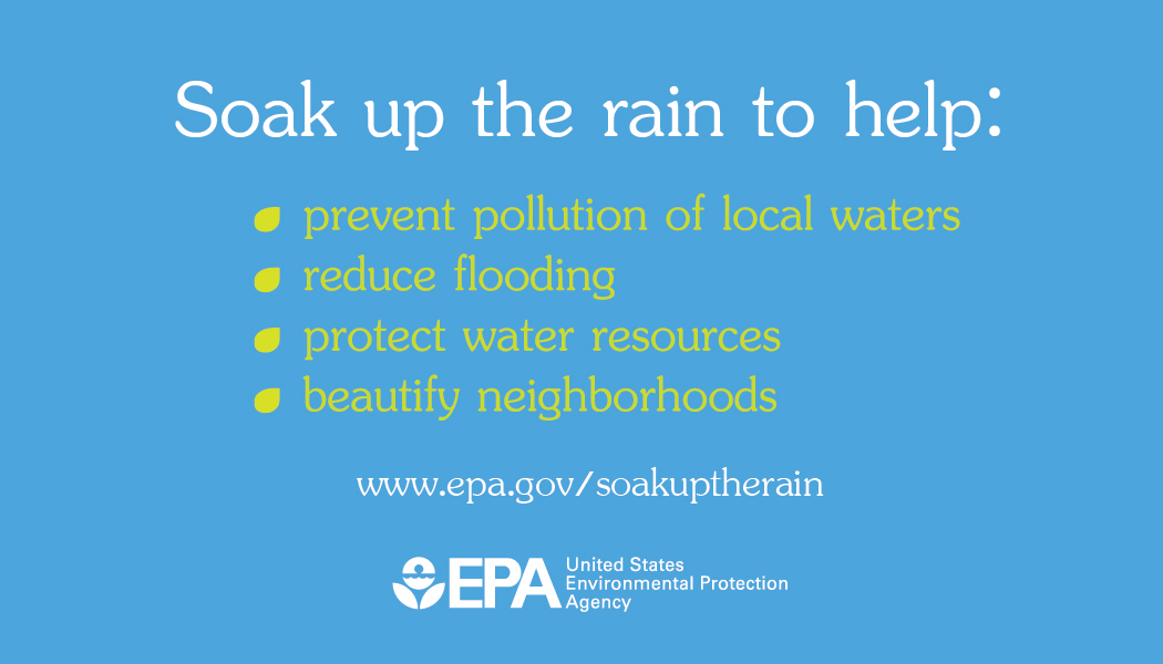 Soak Up the Rain Business-Sized Card   Soak Up the Rain   US EPA