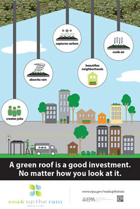 Living Roof Bus Shelter Poster 2016: A Green Roof is a Good Investment