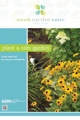 Soak Up the Rain Rain Garden Poster