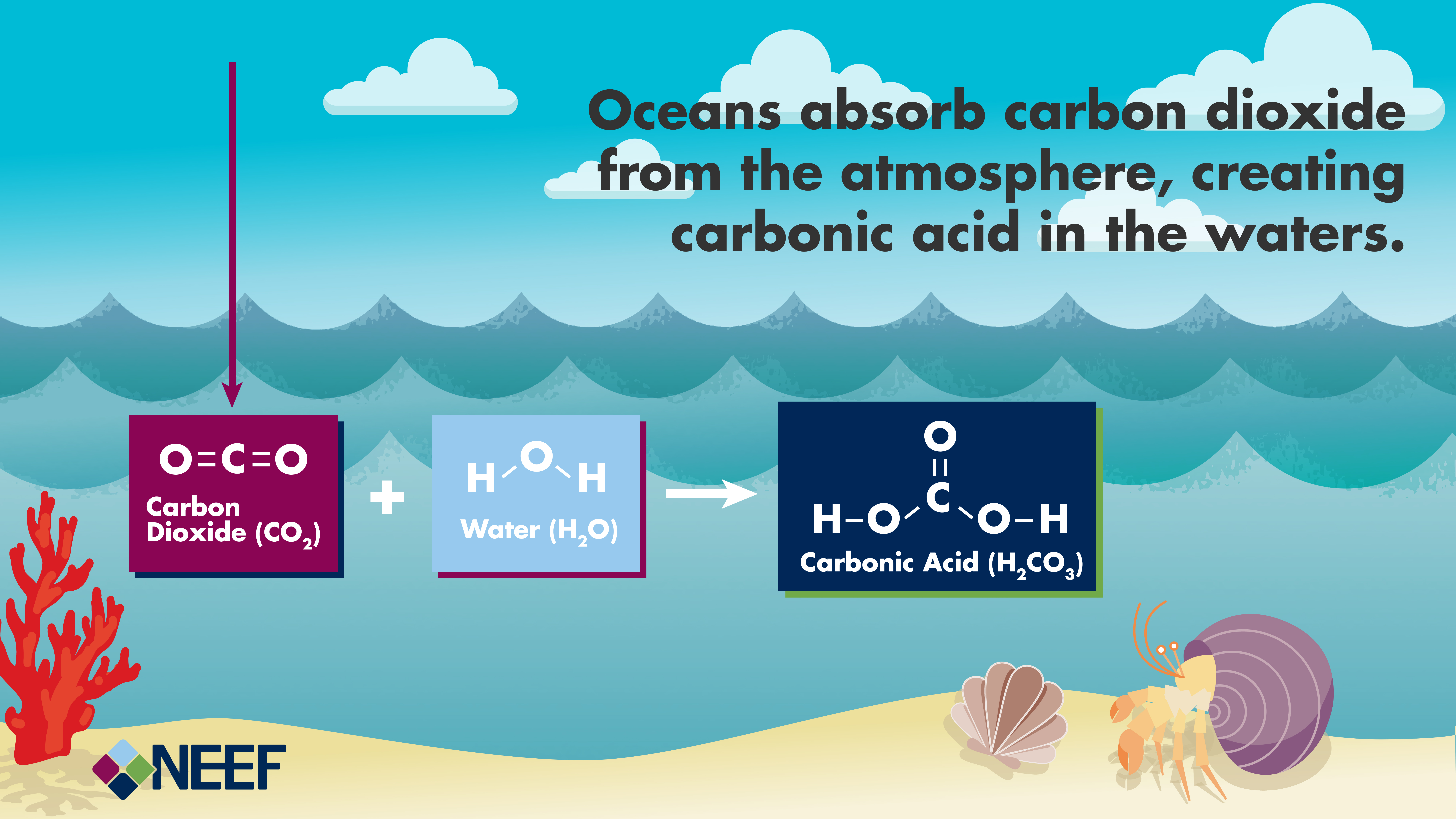 Understanding the science of ocean and coastal acidification simple conceptual diagram showing carbon dioxide molecules from the air reacting with water molecules to form pooptronica
