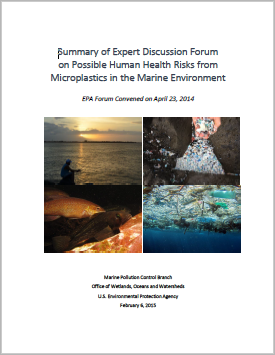 "Cover of report ""Summary of Expert Discussion Forum on Possible Human Health Risks from Microplastics in the Marine Environment"""