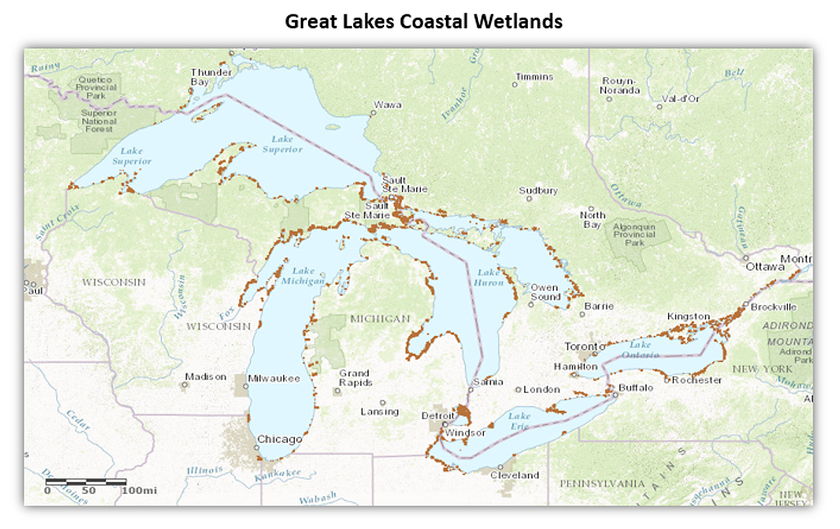 Map of the Great Lakes Coastal Wetlands
