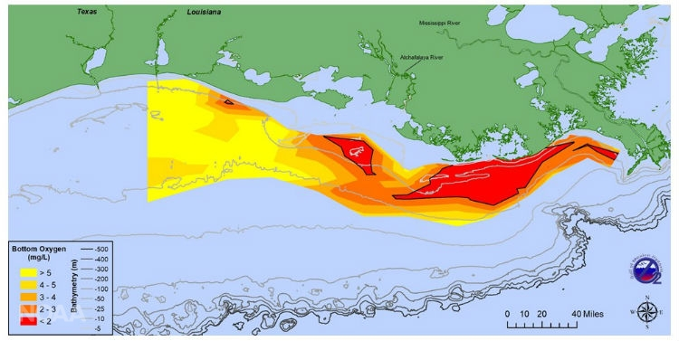 Northern Gulf of Mexico Hypoxic Zone | Mississippi River/Gulf of
