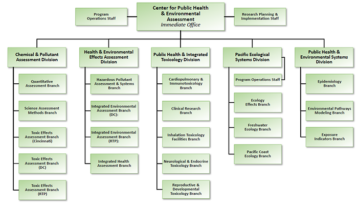 Organization chart showing divisions and branches within EPA's Center for Public Health & Environmental Assessment