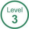 GVG Vehicle Auto Level 3