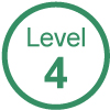 GVG Vehicle Auto Level 4