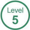 GVG Vehicle Auto Level 5