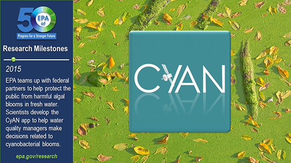 2015-EPA teams up with federal partners to help protect the public from harmful algal blooms in fresh water. Scientists develop the CyAN app to help water quality managers make decisions related to cyanobacterial blooms.