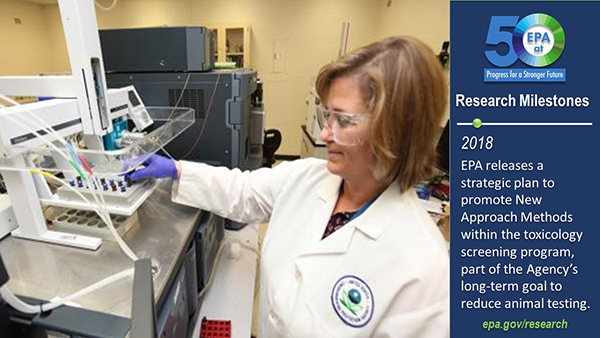 2018-EPA releases a strategic plan to promote New Approach Methods within the toxicology screening program, part of the agency's long-term goal to reduce animal testing. EPA scientist, Dr. Jody Shoemaker, conducting research at EPA research center.