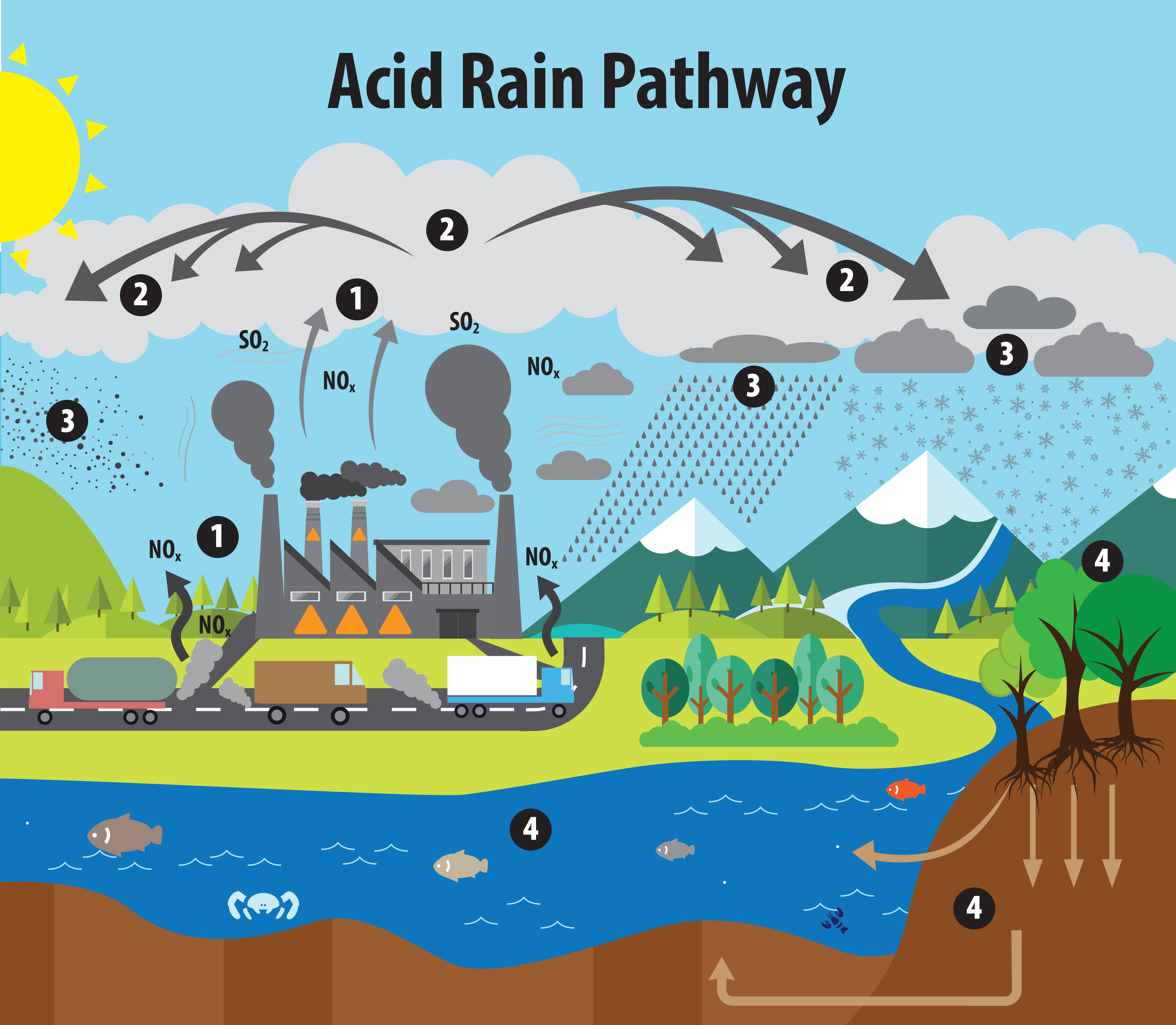 This image illustrates the pathway for acid rain in our environment.