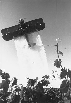 Black and white photo of a small plane spraying pesticide on a field.