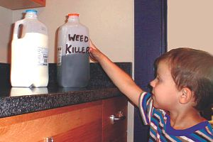 child reaching for weed killer in milk carton