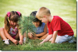 three children sitting in the grass looking at a baby pine tree