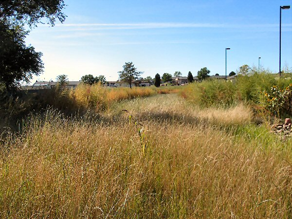 vegetative swale in Ft Carson, Colo.