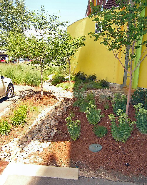 Green Infrastructure In The Semi Arid West Green