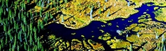arial image of bristol bay
