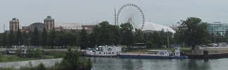 View of Navy Pier in Chicago which is in Lindsay Light site area