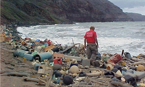 Man walking on trash filled beach collecting garbage - Photo credit: NOAA