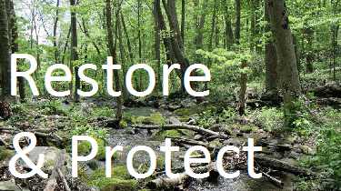 NPS Restore and Protect