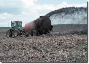 The Sources and Solutions: Agriculture | Nutrient Pollution | US EPA