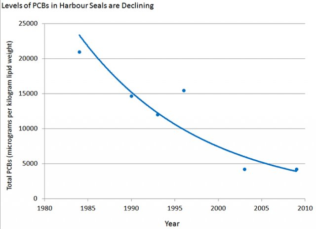 Chart showing decline in levels of PCBs in harbor seals in the Salish Sea since 1980.