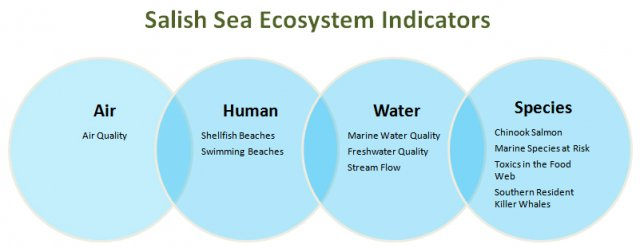 Diagram showing interconnection between the ten ecosystem indictors being studied in EPA and Environment Canada's Health of the Salish Sea Ecosystem Report.