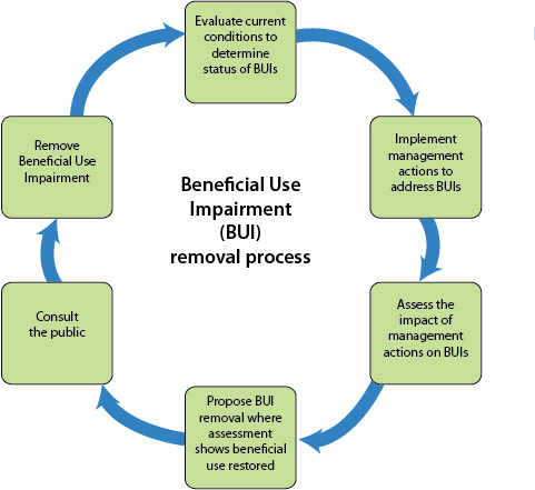 diagram showing steps toward removing beneficial use impairments