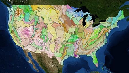Ecoregion polygons for the contiguous United States