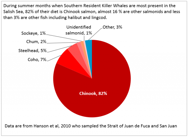 During summer months when Southern Resident Killer Whales are most present in the Salish Sea, 82% of their diet is Chinook salmon, almost 16 % are other salmonids and less than 3% are other fish including halibut and lingcod.
