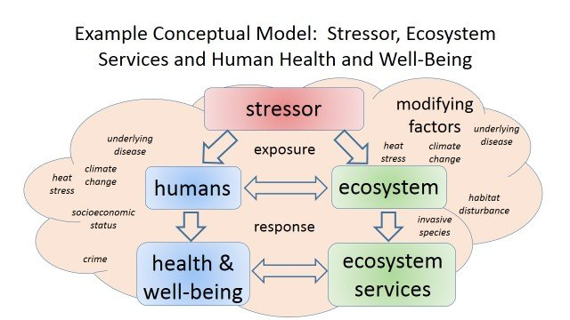 Example Conceptual Model: Stressor, Ecosystem Services and Human Health and Well-Being