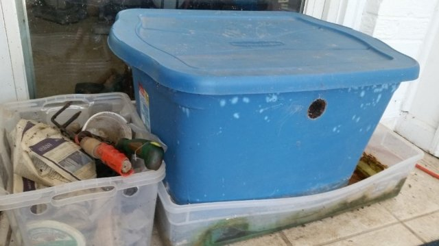 This is a picture of a large blue plastic bin used for worm composting