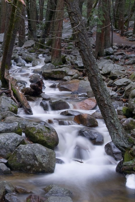 Streams section 404 of the clean water act permitting for Fish and stream