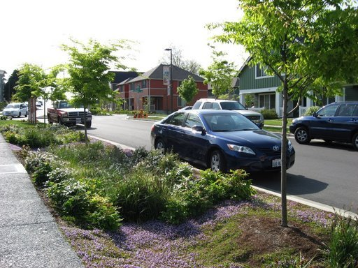 Photo of a street-side swale and adjacent porous concrete sidewalk are located in the High Point neighborhood of Seattle, WA (Source: Abby Hall, US EPA).
