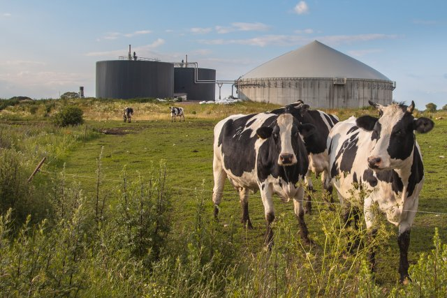 Anaerobic Digesters on a Farm