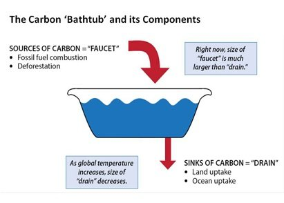 Image showing a bathtub. Sources of carbon are the faucet, while sinks of carbon are the drain.