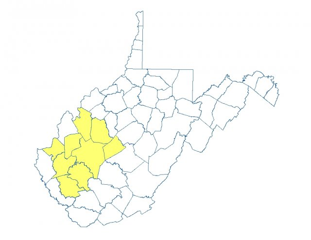 Map of West Virginia highlighted in yellow by counties affected by the Elk River spill, Putnam, Roane, Logan, Lincoln, Kanawha, Jackson, Clay, Cabell and Boone.