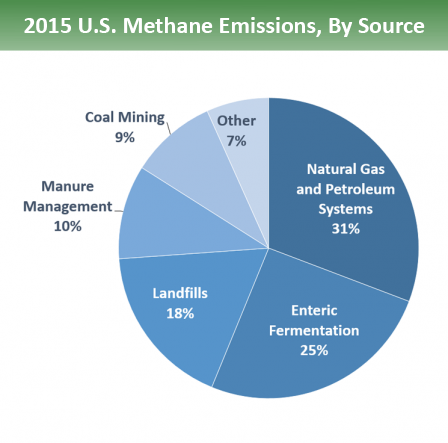 Pie chart of U.S. methane emissions by source. 31% is from natural gas and petroleum systems, 25% is from enteric fermentation, 18% is from landfills, 10% is from manure management, 9% is from coal mining, and 7% is from other sources.
