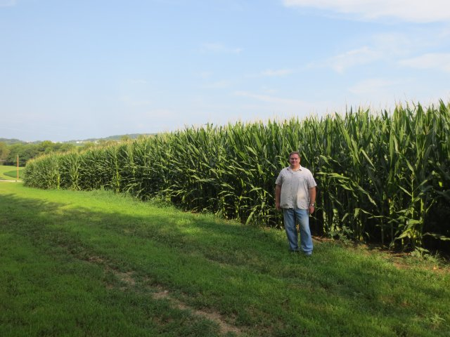 Robert standing in front a corn field on the family farm