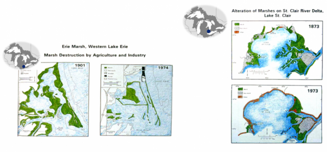 Great Lakes Commission maps of Lake Erie and Lake St. Clair coastal wetland degradation overtime.